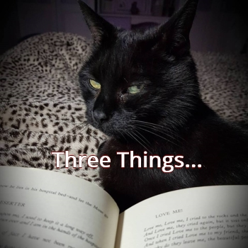 Three Things Pic