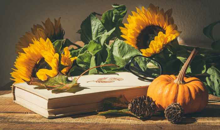 sunflowers on book